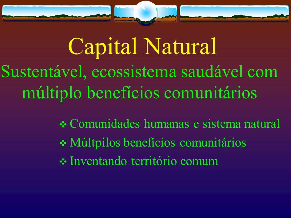 Capital Natural Sustentável, ecossistema saudável com múltiplo benefícios comunitários
