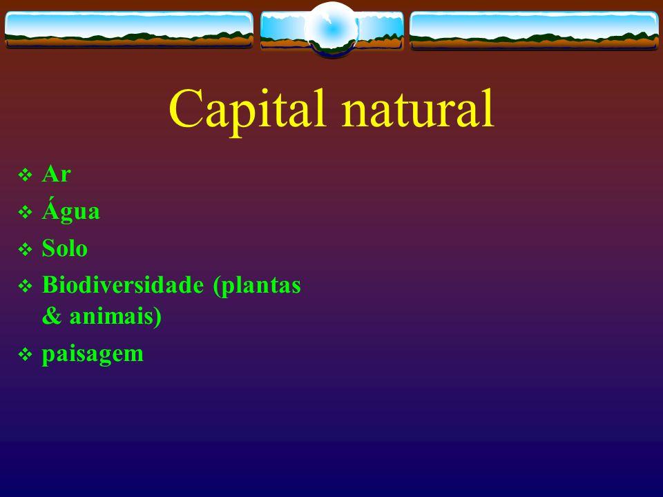 Capital natural Ar Água Solo Biodiversidade (plantas & animais)