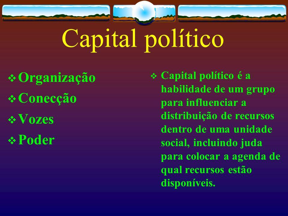 Capital político Organização Conecção Vozes Poder