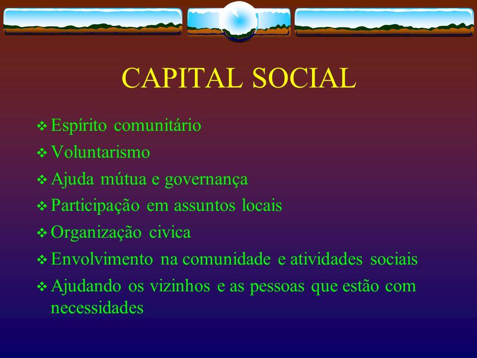 CAPITAL SOCIAL Espírito comunitário Voluntarismo