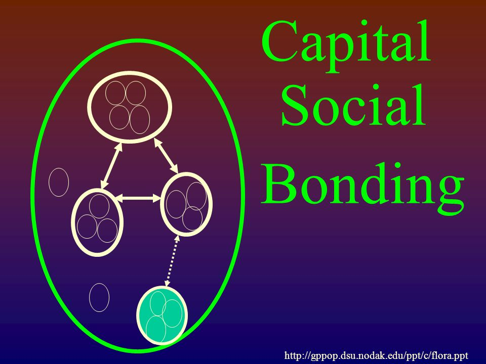Capital Social Bonding http://gppop.dsu.nodak.edu/ppt/c/flora.ppt