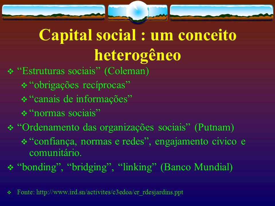 Capital social : um conceito heterogêneo