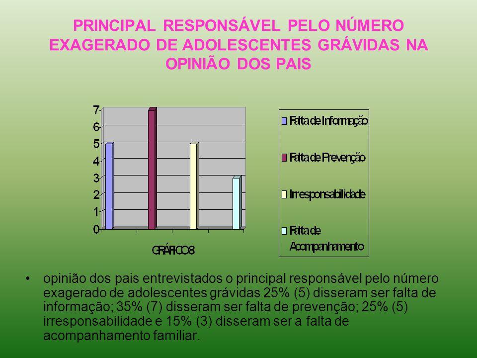 PRINCIPAL RESPONSÁVEL PELO NÚMERO EXAGERADO DE ADOLESCENTES GRÁVIDAS NA OPINIÃO DOS PAIS