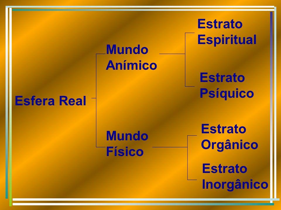 Estrato Espiritual Mundo Anímico. Estrato Psíquico. Esfera Real. Estrato Orgânico. Mundo Físico.