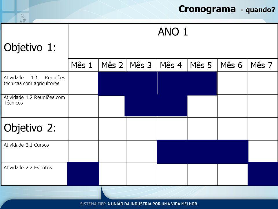 ANO 1 Objetivo 1: Objetivo 2: Cronograma - quando Mês 1 Mês 2 Mês 3
