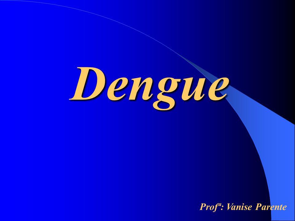 Dengue Profª: Vanise Parente