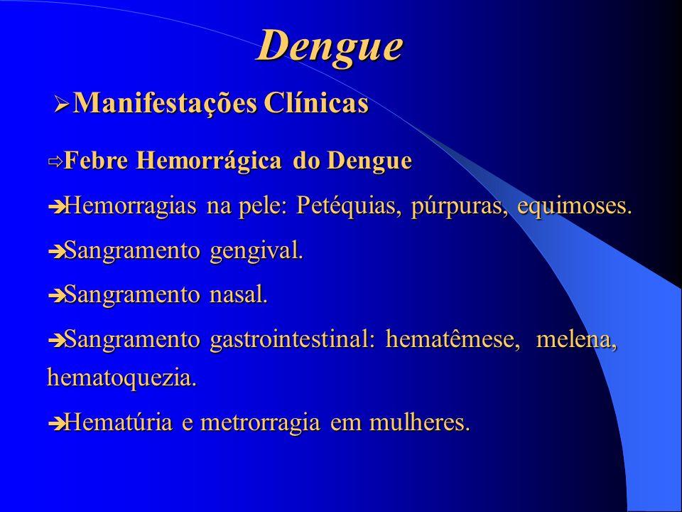 Dengue Manifestações Clínicas Febre Hemorrágica do Dengue