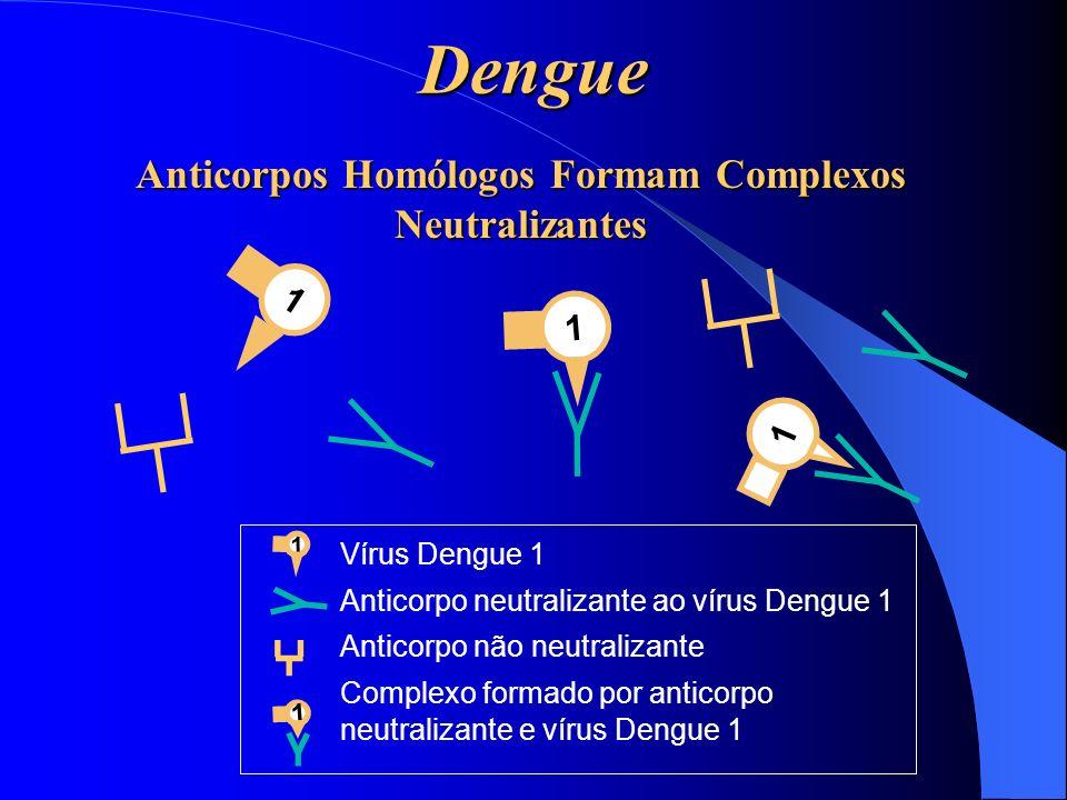 Anticorpos Homólogos Formam Complexos Neutralizantes