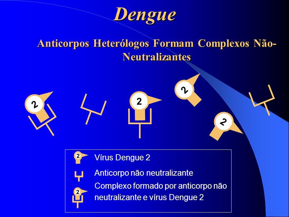 Anticorpos Heterólogos Formam Complexos Não-Neutralizantes