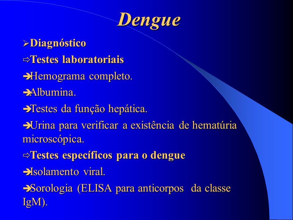 Dengue Diagnóstico Testes laboratoriais Hemograma completo. Albumina.