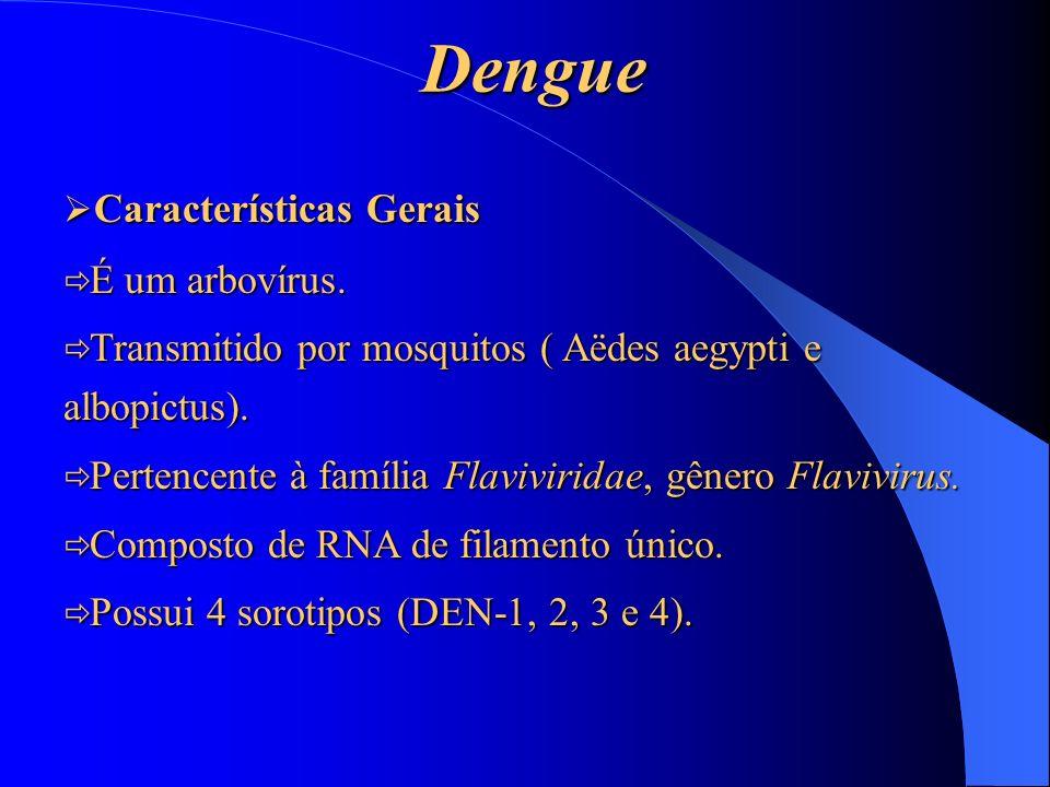 Dengue Características Gerais É um arbovírus.