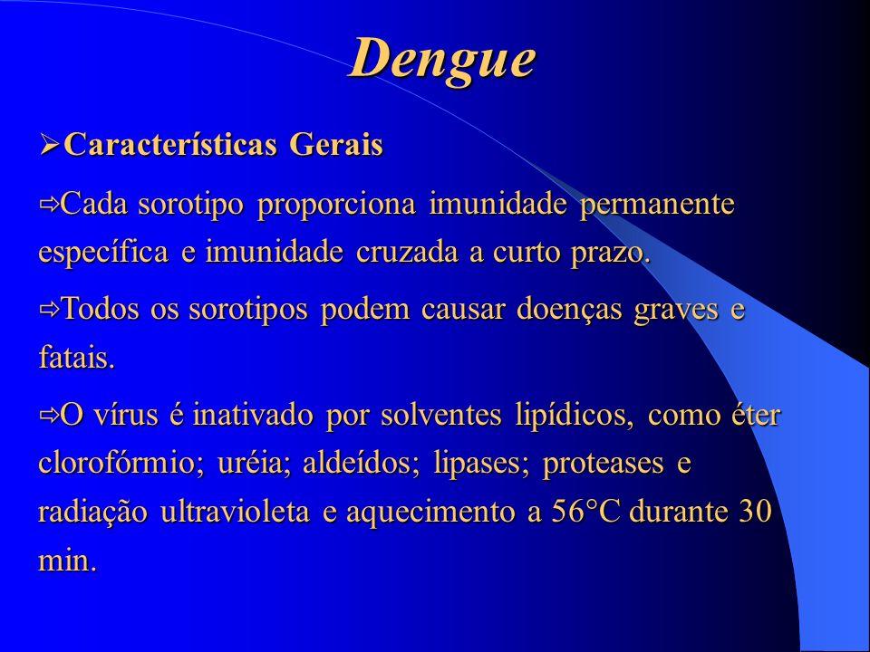 Dengue Características Gerais