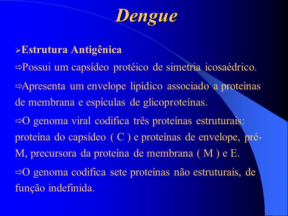 Dengue Possui um capsídeo protéico de simetria icosaédrico.