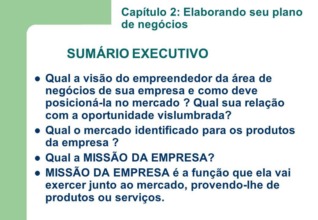 SUMÁRIO EXECUTIVO Capítulo 2: Elaborando seu plano de negócios