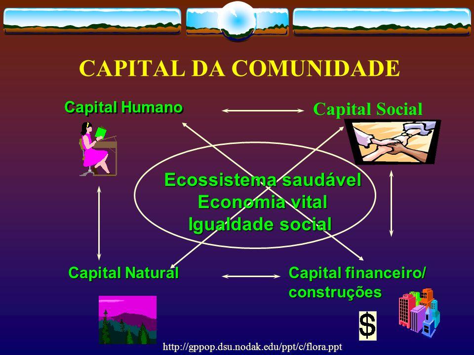 CAPITAL DA COMUNIDADE Capital Social Ecossistema saudável