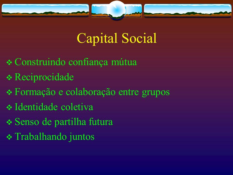 Capital Social Construindo confiança mútua Reciprocidade