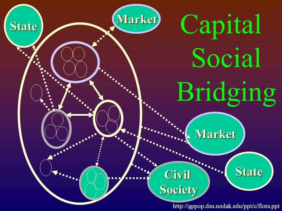 Capital Social Bridging