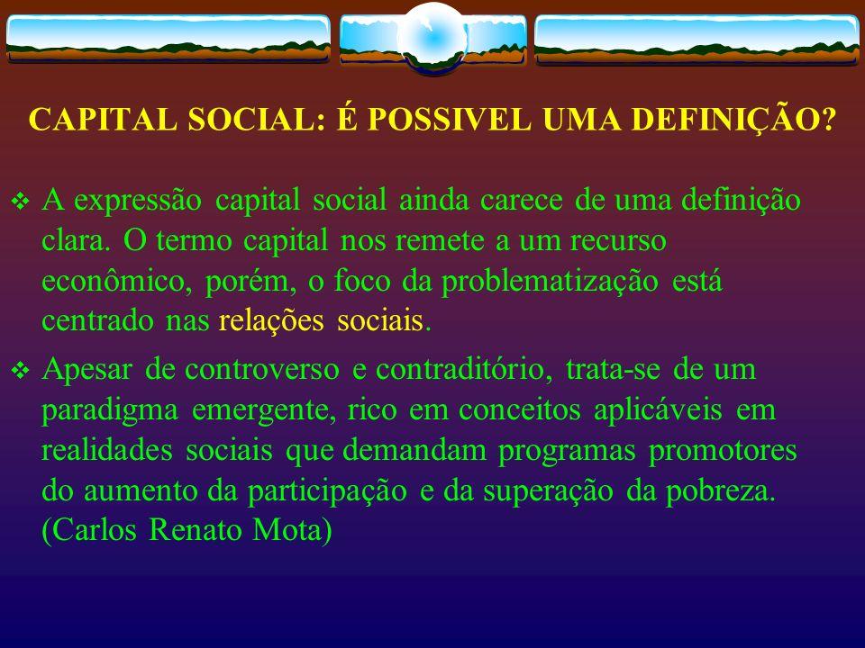 CAPITAL SOCIAL: É POSSIVEL UMA DEFINIÇÃO
