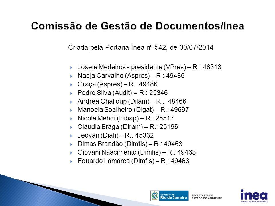 Comissão de Gestão de Documentos/Inea