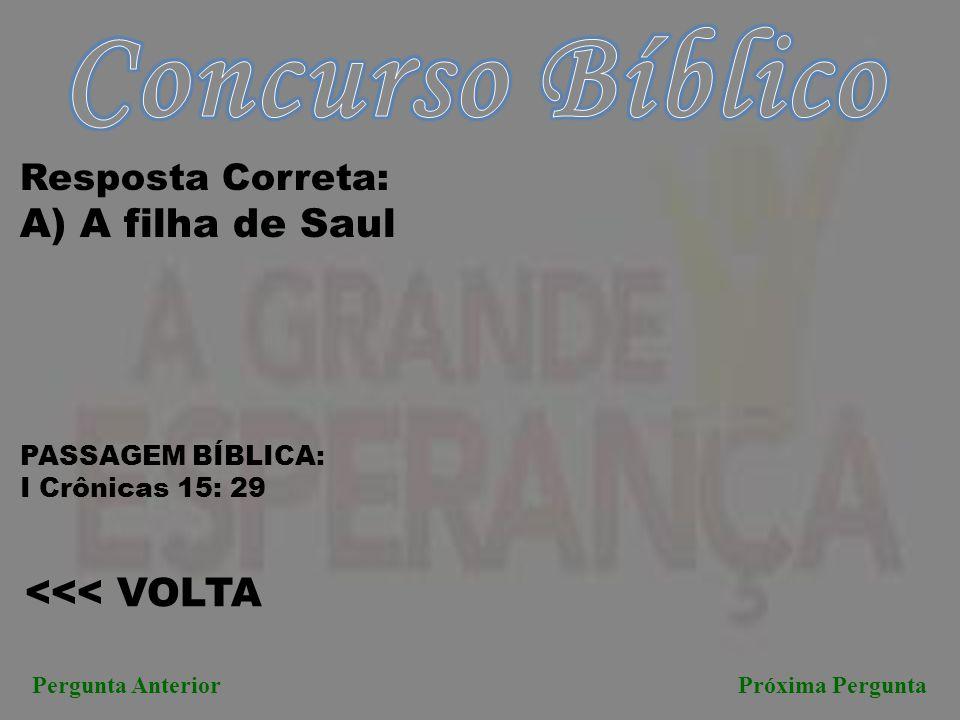 Concurso Bíblico A) A filha de Saul <<< VOLTA