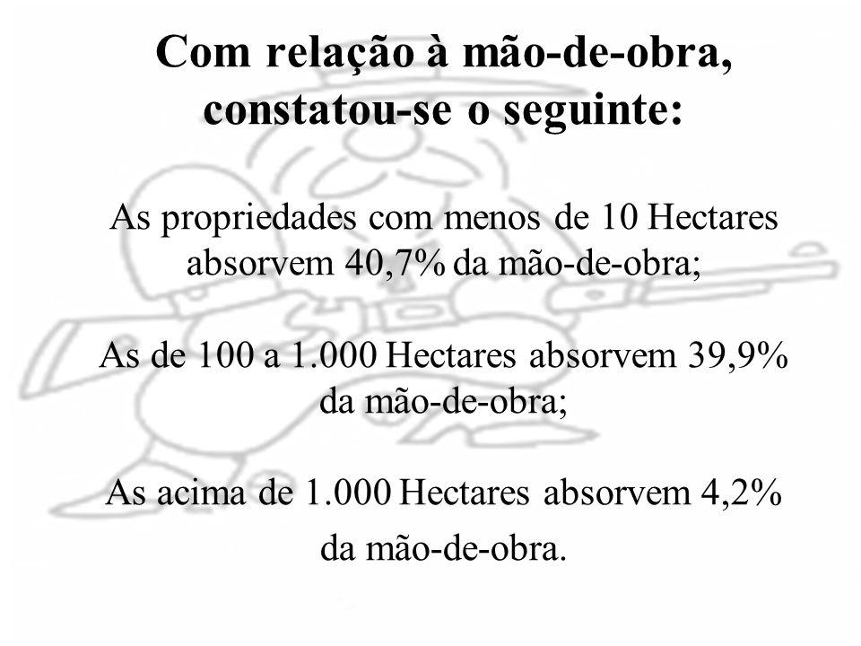 Com relação à mão-de-obra, constatou-se o seguinte: As propriedades com menos de 10 Hectares absorvem 40,7% da mão-de-obra; As de 100 a 1.000 Hectares absorvem 39,9% da mão-de-obra; As acima de 1.000 Hectares absorvem 4,2% da mão-de-obra.