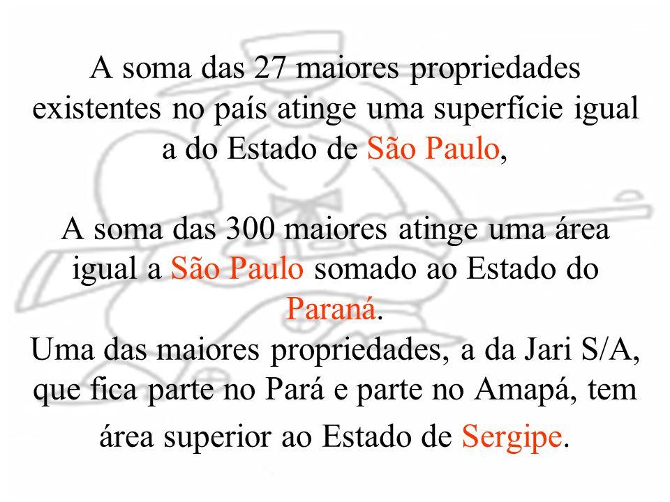 A soma das 27 maiores propriedades existentes no país atinge uma superfície igual a do Estado de São Paulo, A soma das 300 maiores atinge uma área igual a São Paulo somado ao Estado do Paraná.