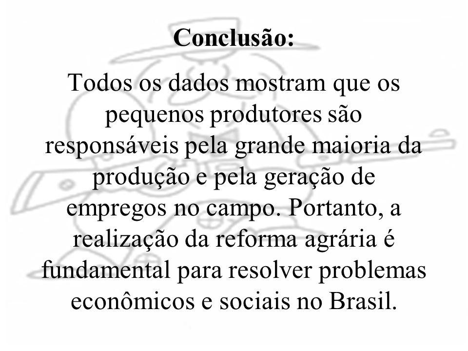 Conclusão: Todos os dados mostram que os pequenos produtores são responsáveis pela grande maioria da produção e pela geração de empregos no campo.