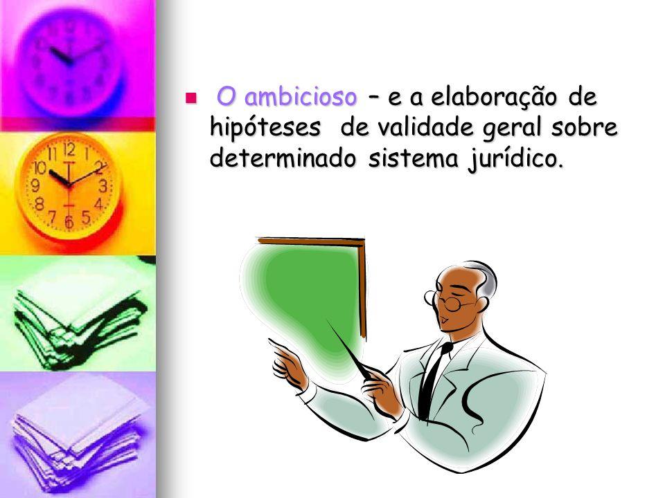 O ambicioso – e a elaboração de hipóteses de validade geral sobre determinado sistema jurídico.