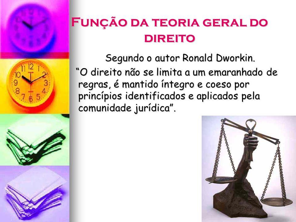 Função da teoria geral do direito
