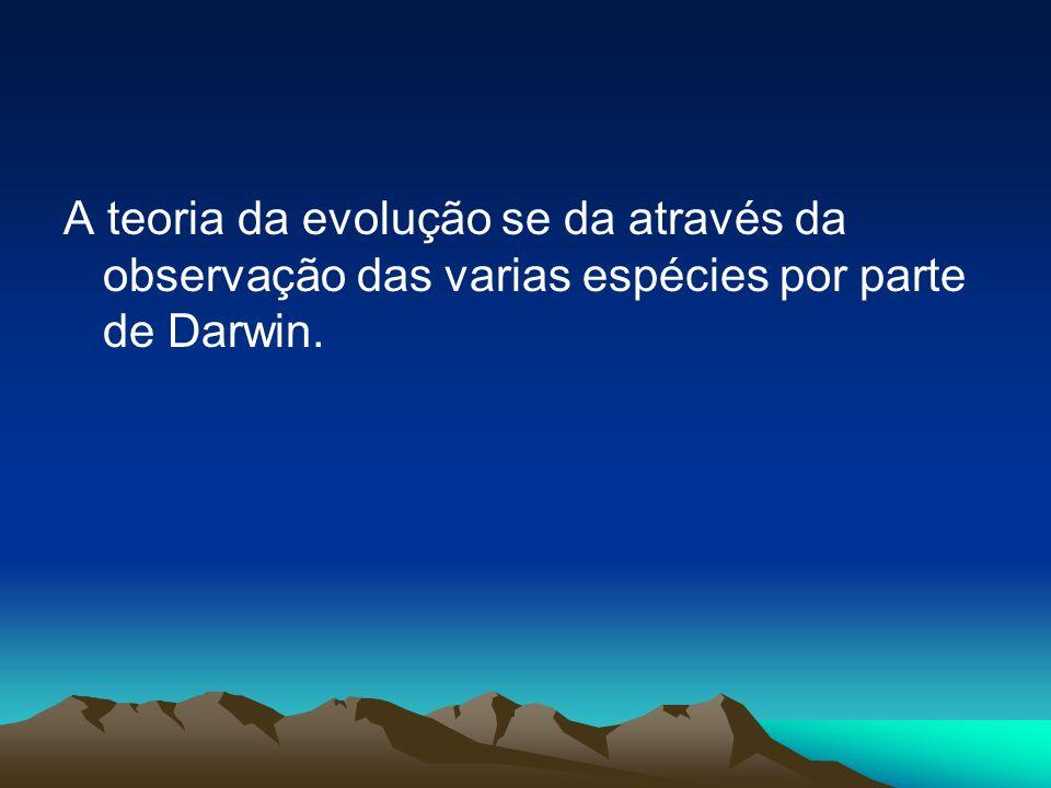 A teoria da evolução se da através da observação das varias espécies por parte de Darwin.
