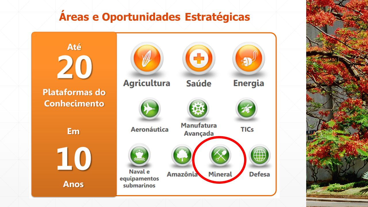 Áreas e Oportunidades Estratégicas