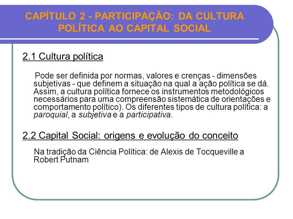 CAPÍTULO 2 - PARTICIPAÇÃO: DA CULTURA POLÍTICA AO CAPITAL SOCIAL