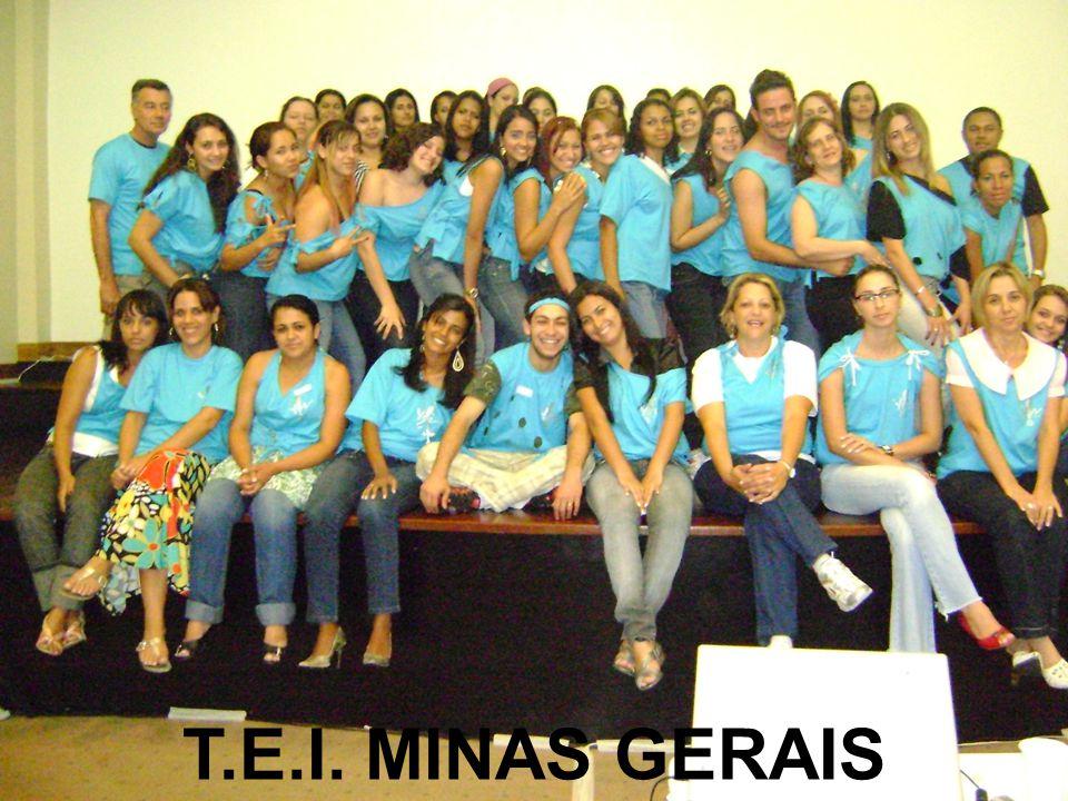 T.E.I. MINAS GERAIS