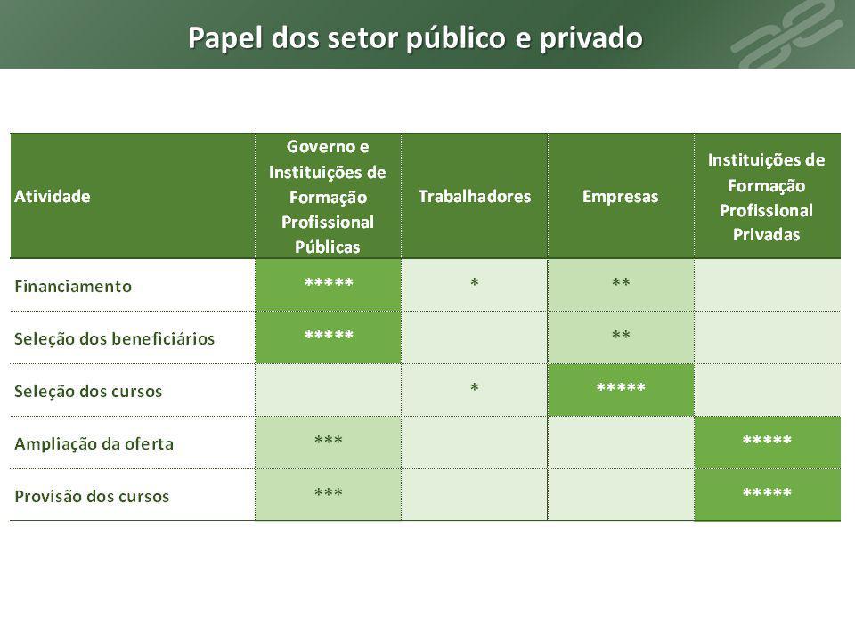 Papel dos setor público e privado