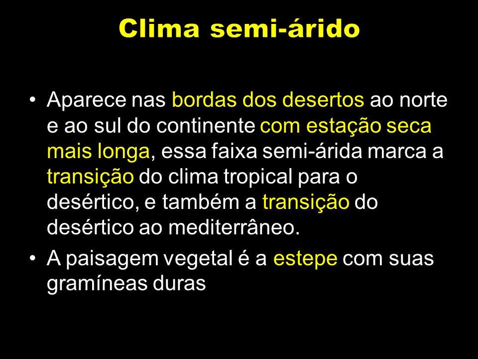 Clima semi-árido