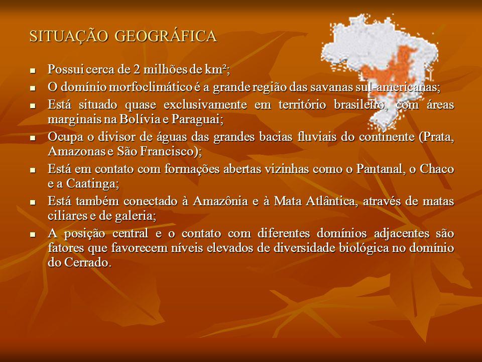 SITUAÇÃO GEOGRÁFICA Possui cerca de 2 milhões de km²;
