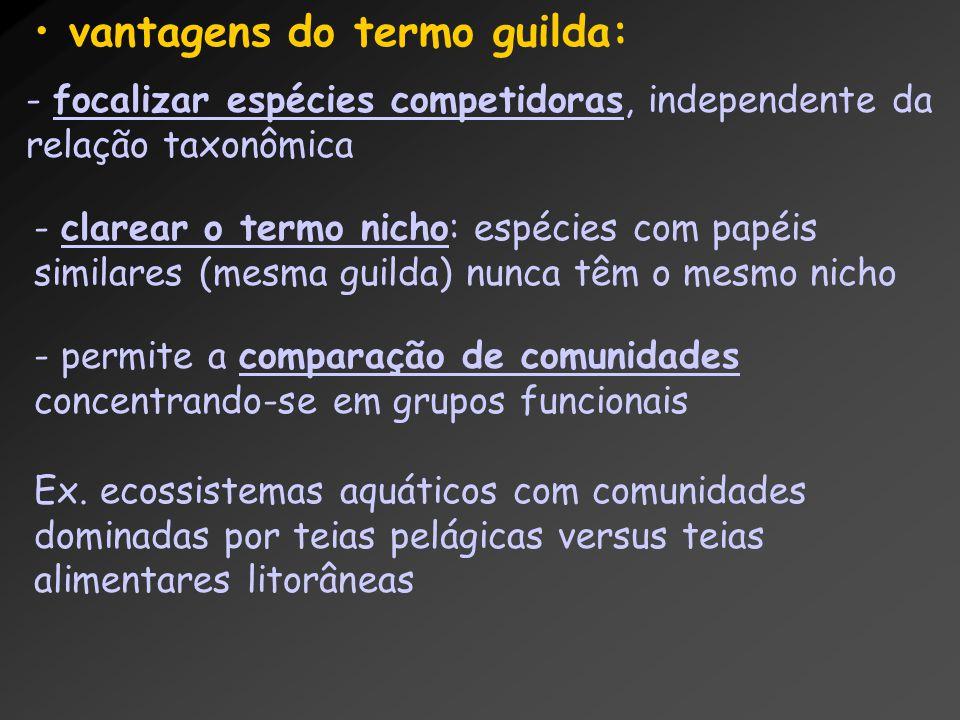 vantagens do termo guilda: