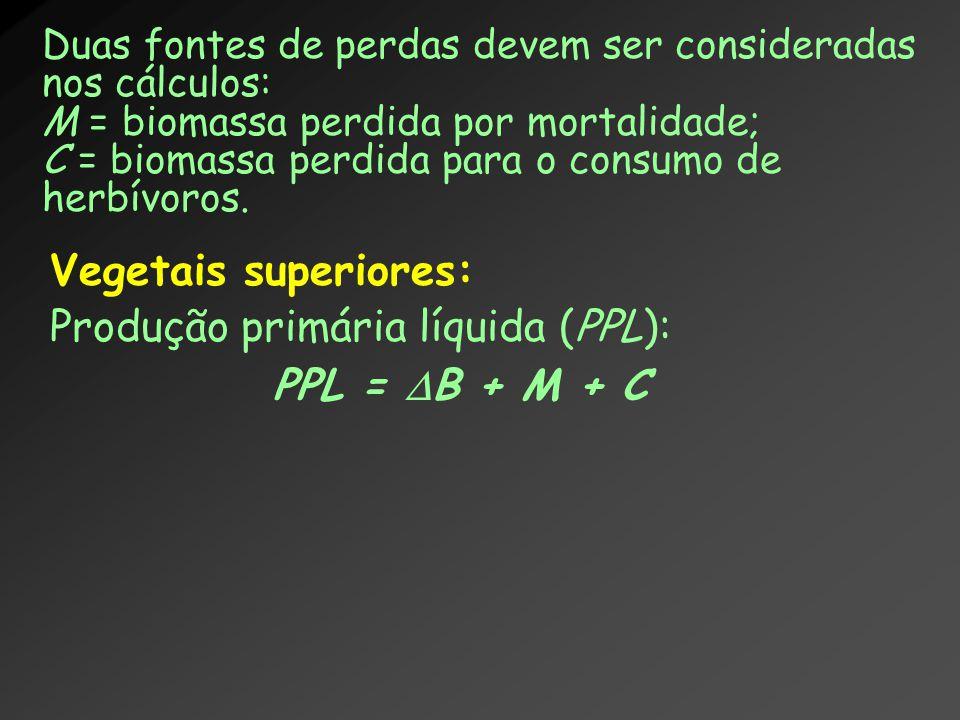 Produção primária líquida (PPL): PPL = B + M + C