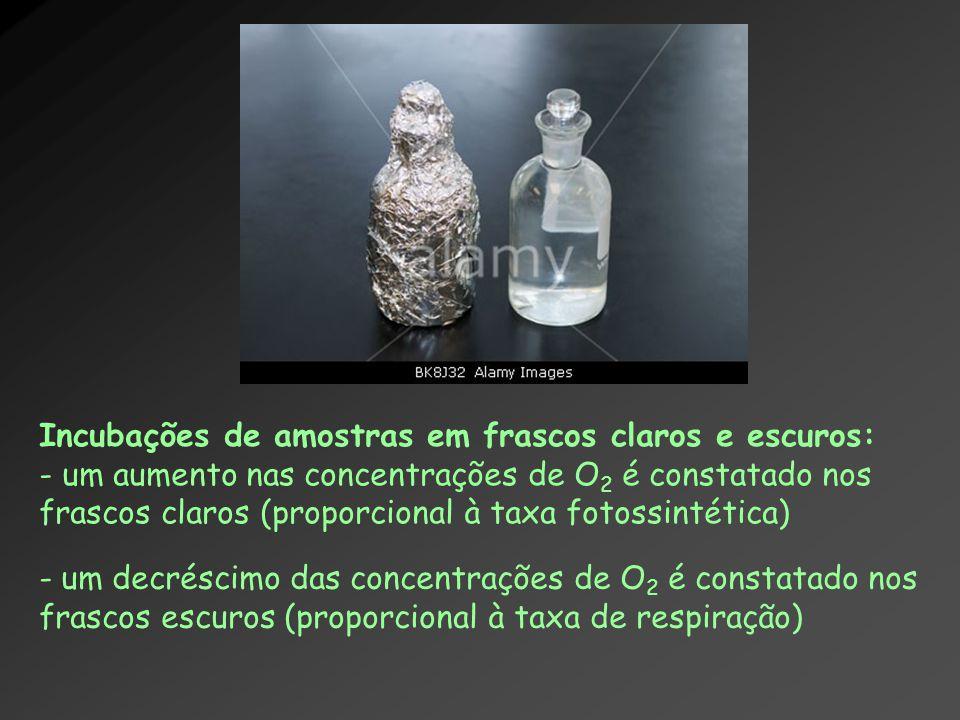Incubações de amostras em frascos claros e escuros: