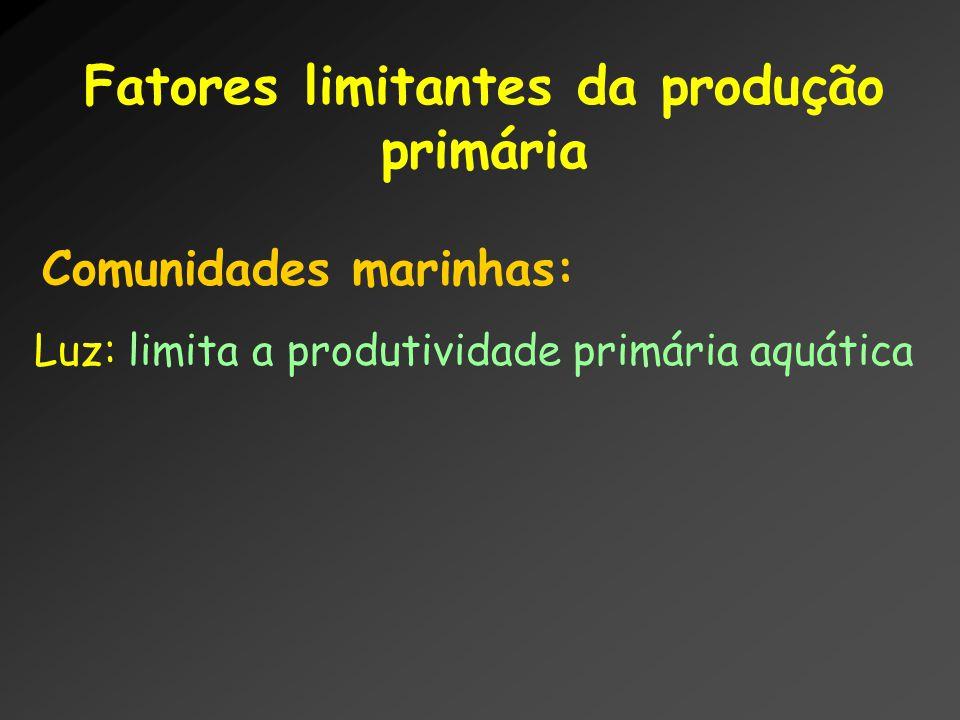 Fatores limitantes da produção primária