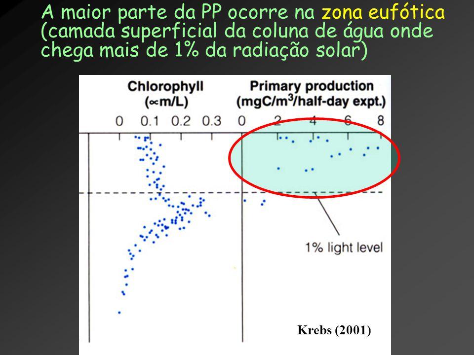 A maior parte da PP ocorre na zona eufótica (camada superficial da coluna de água onde chega mais de 1% da radiação solar)