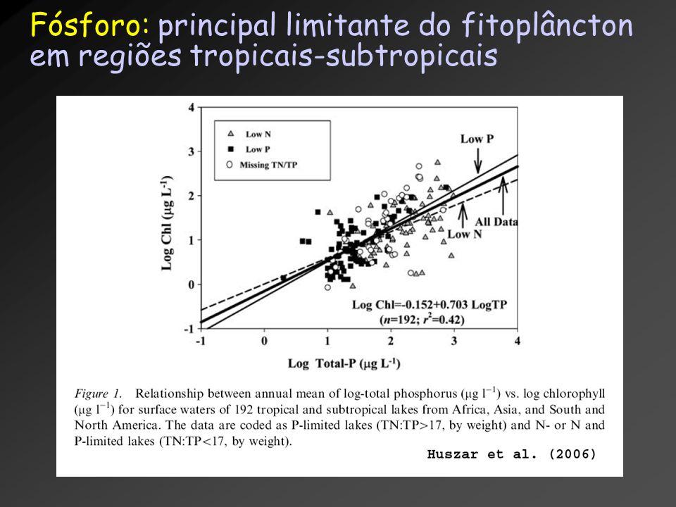 Fósforo: principal limitante do fitoplâncton em regiões tropicais-subtropicais