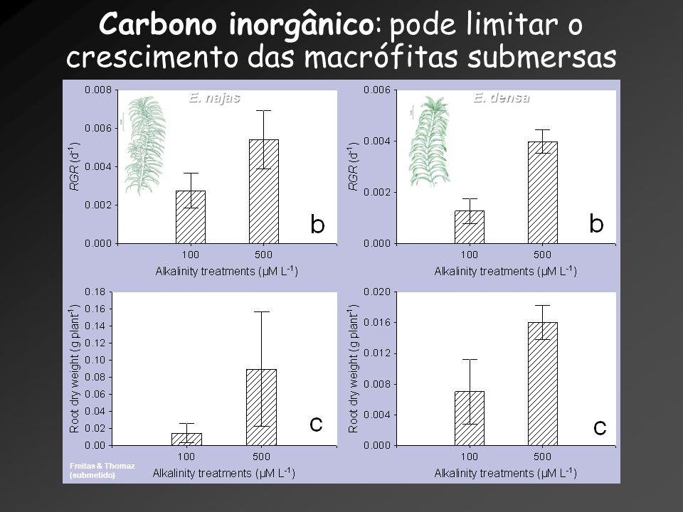 Carbono inorgânico: pode limitar o crescimento das macrófitas submersas