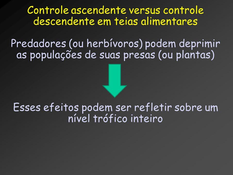 Controle ascendente versus controle descendente em teias alimentares