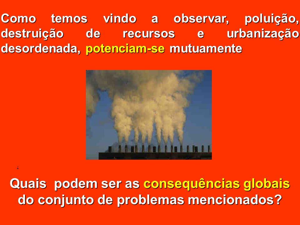 Como temos vindo a observar, poluição, destruição de recursos e urbanização desordenada, potenciam-se mutuamente