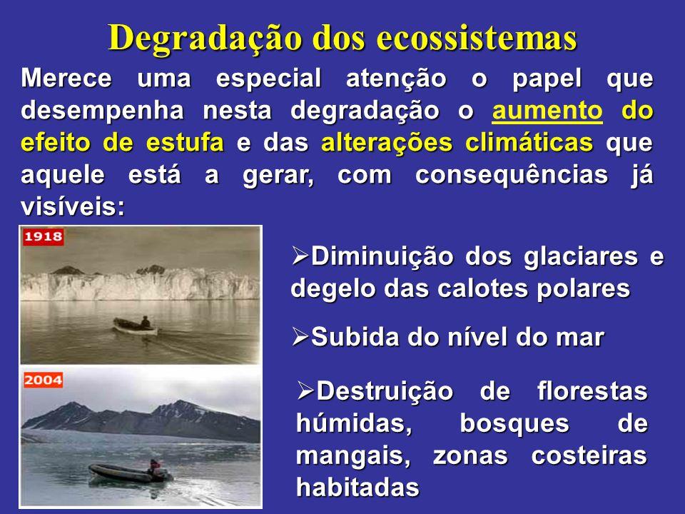 Degradação dos ecossistemas