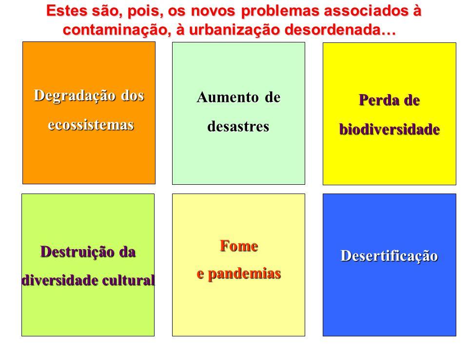Degradação dos Aumento de Perda de ecossistemas desastres