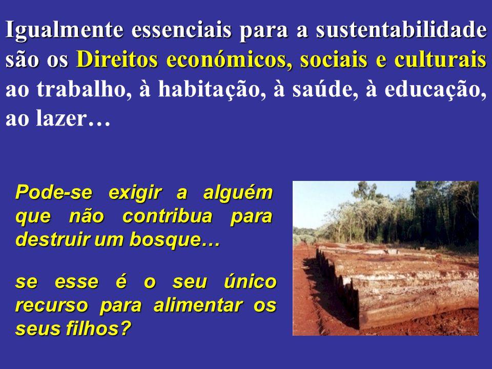 Igualmente essenciais para a sustentabilidade são os Direitos económicos, sociais e culturais ao trabalho, à habitação, à saúde, à educação, ao lazer…