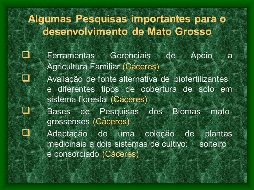 Algumas Pesquisas importantes para o desenvolvimento de Mato Grosso