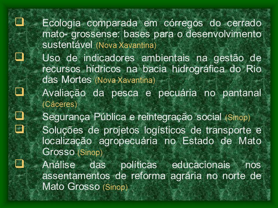 Ecologia comparada em córregos do cerrado